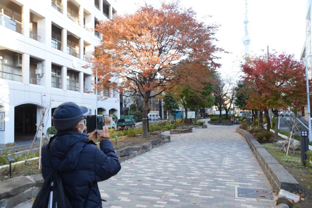 自転車 サイクリング 街歩き 散策 東京のツアー プライベートツアー 東京 下町 日帰り 散歩 ガイド アウトドア 魅力いっぱい 江戸散歩 歴史 毎日 歴史街道 江戸 江戸っ子 商店街 路地裏 山谷堀 吉原 遊郭