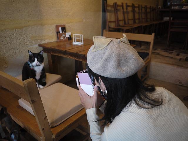 自転車 裏路地 Tokyo Backstreets Bike Tour ツアー サイクリング ポタリング 東京 下町 江戸 町歩き クルーズ ブロンプトン Brompton ネコ ねこ 猫
