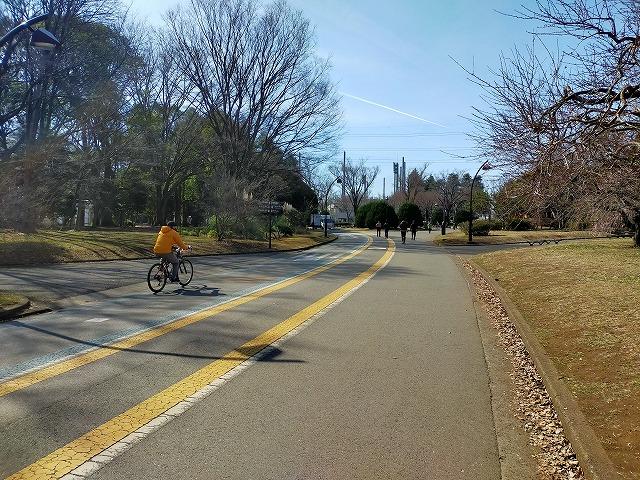 自転車 裏路地 Tokyo Backstreets Bike Tour ツアー サイクリング ポタリング 東京 下町 江戸 町歩き クルーズ ブロンプトン Brompton ロードバイク 駒沢オリンピック総合運動場 梅 レンタサイクル