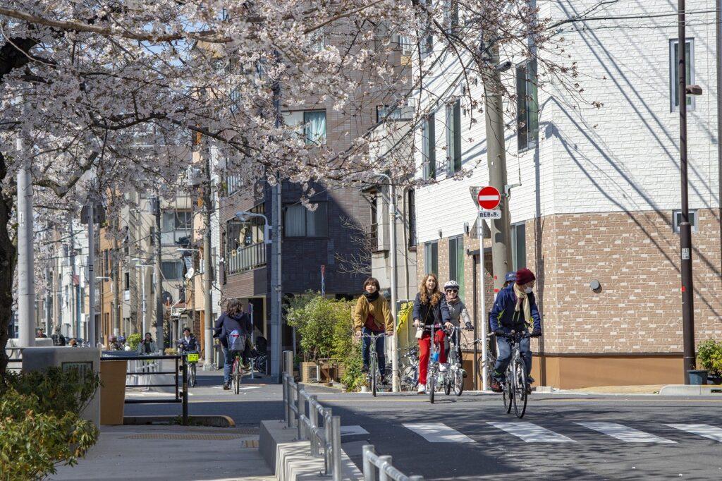 Tokyo Backstreets Bike Tour ツアー サイクリング ポタリング 東京 下町 江戸 町歩き クルーズ 浅草 クルーズ 花見 桜 さくら ソメイヨシノ 屋形船