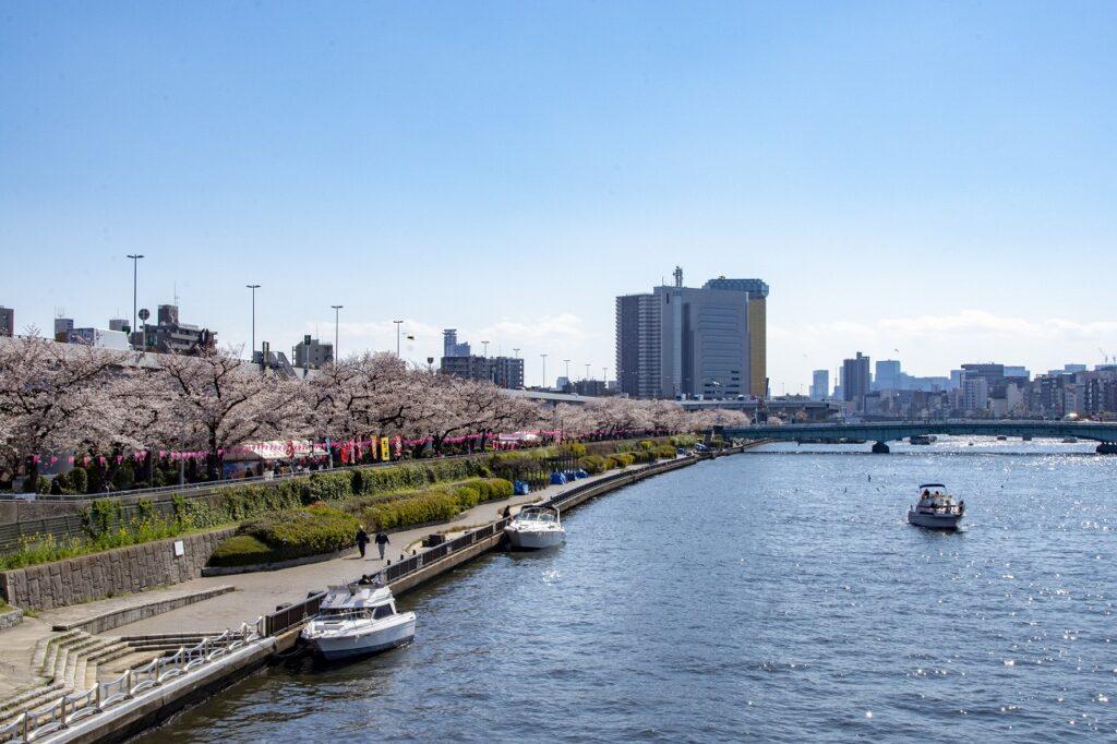 TTokyo Backstreets Bike Tour cruise sakura boat waterways cherry blossom cycling bike private tour yakanabune