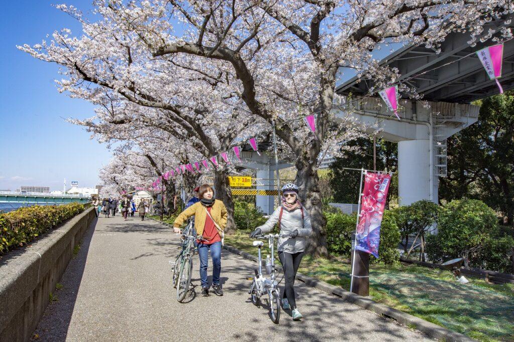 自転車 裏路地 Tokyo Backstreets Bike Tour ツアー サイクリング ポタリング 東京 下町 江戸 町歩き クルーズ ブロンプトン Brompton レンタサイクル 浅草 花見 屋形船 桜 ソメイヨシノ